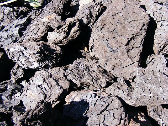 Free black btu coal combustible lignite mineral