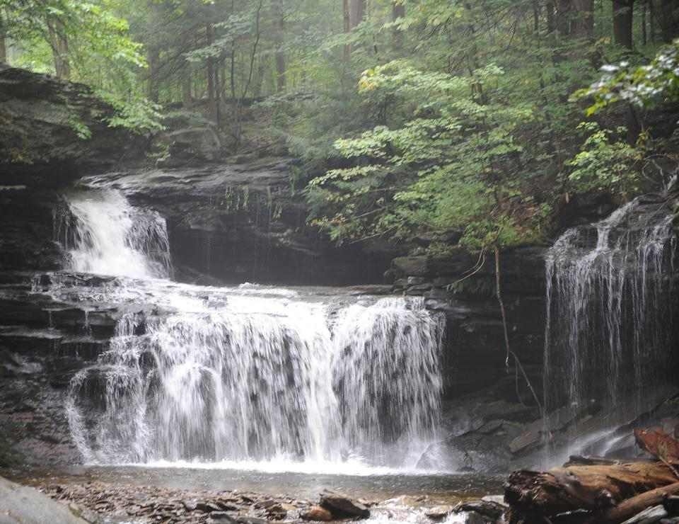Free Photos: Waterfalls in Ricketts Glen State Park | dailyshot