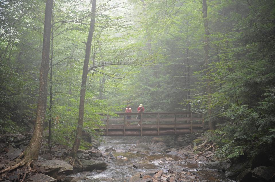 Free Ricketts Glen State Park - Benton, PA