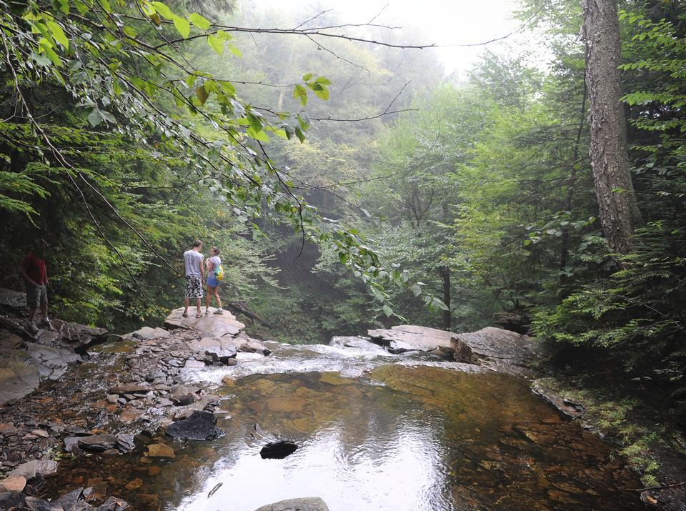 Free Photos: Ricketts Glen State Park | dailyshot