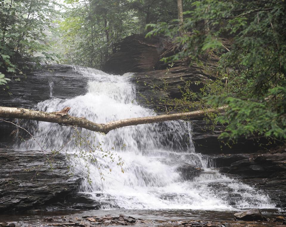 Free Ricketts Glen State Park
