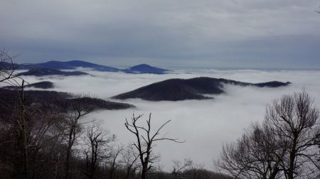 Free Mary's Rock Summit Trail - Shenandoah