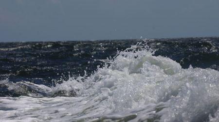 Free Tangier Island Virginia