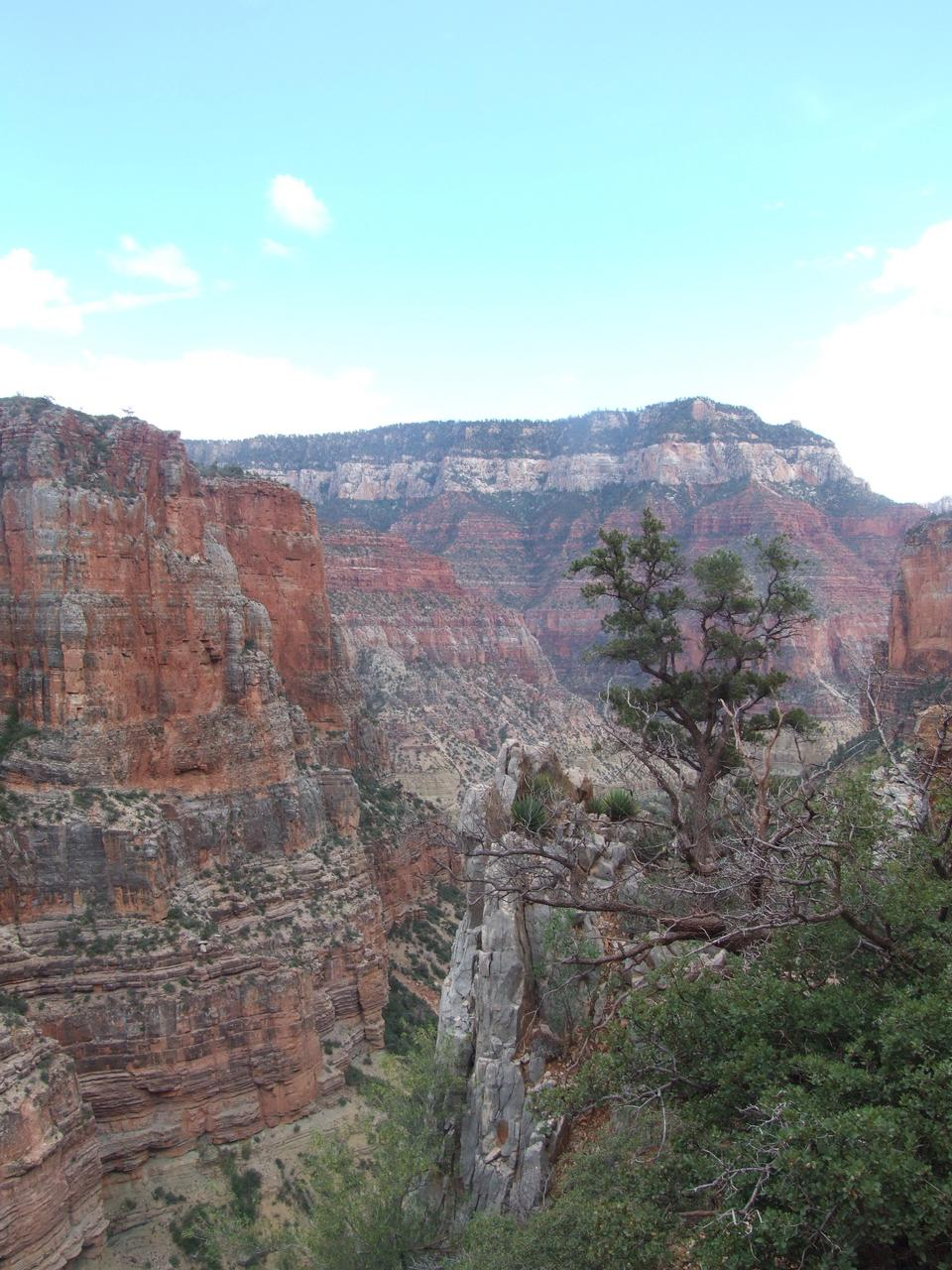 Free Grand Canyon National Park