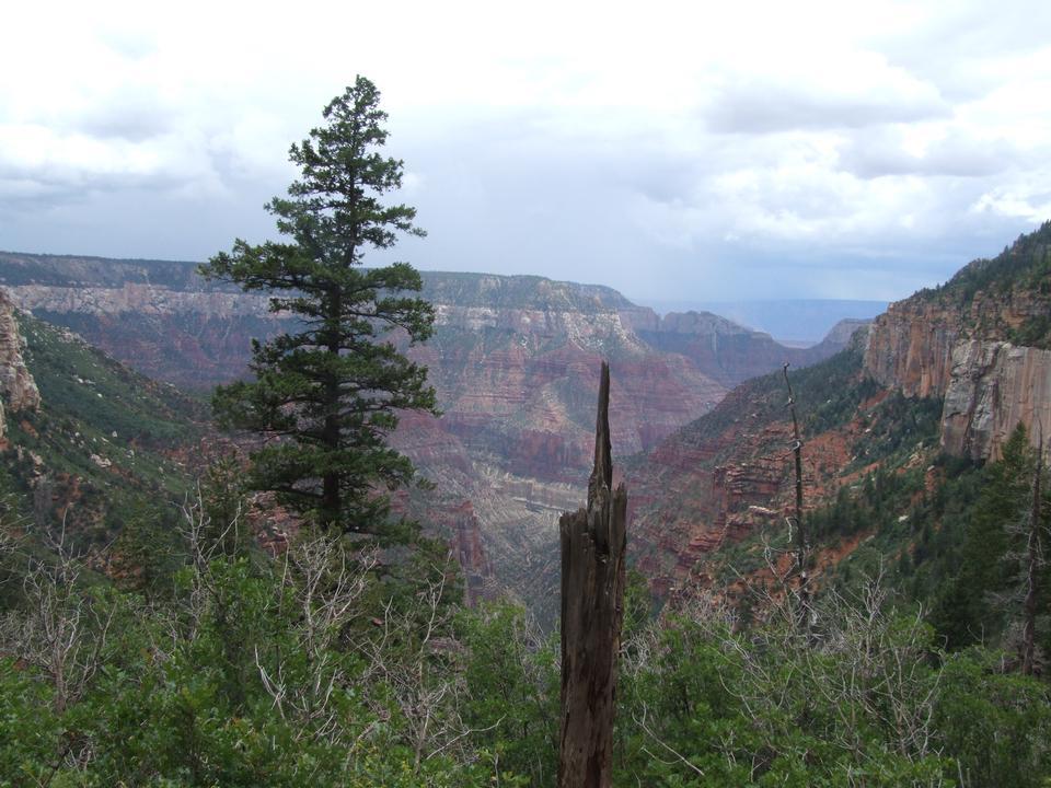 Free Grand Canyon National Park