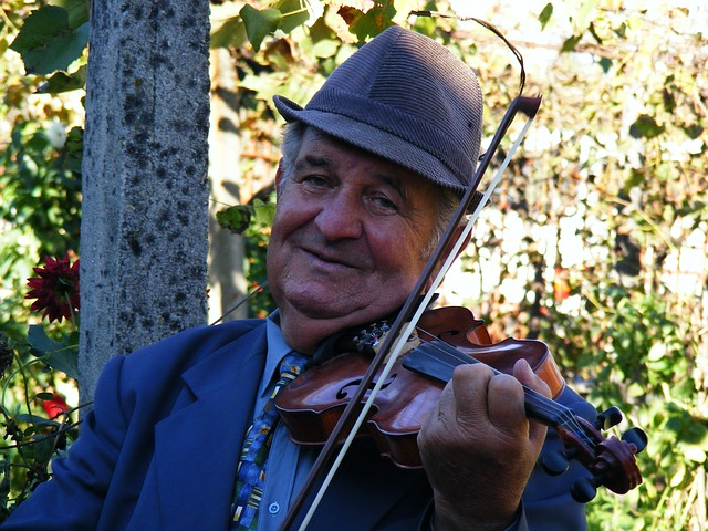 Free gypsy instruments music musicians romania sound