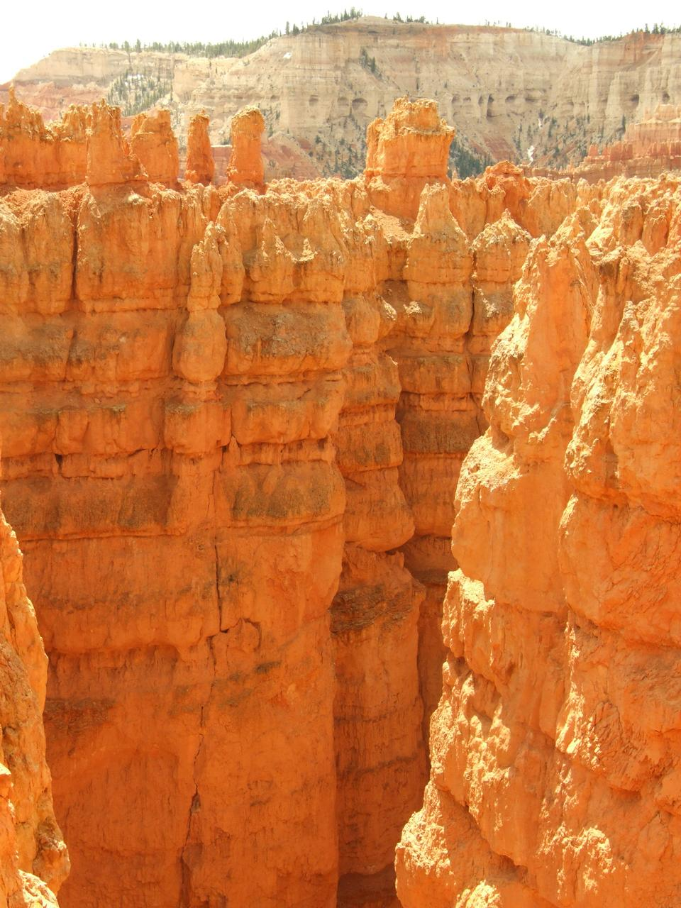 Free Photos: Bryce Canyon, Utah | zettasnap