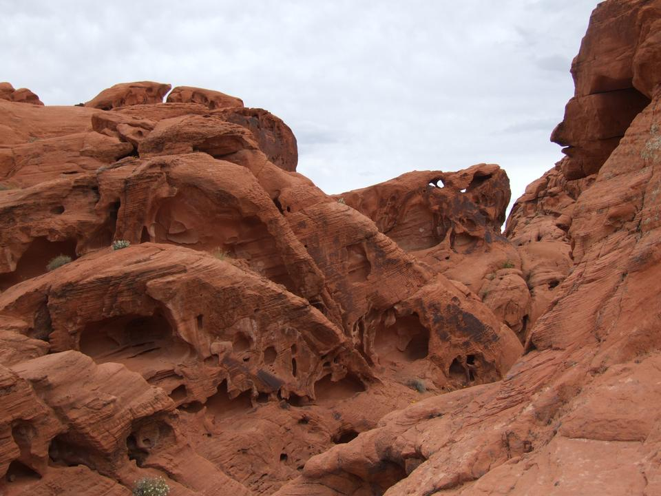 Free Photos: Grand Canyon National Park hiking | zettasnap