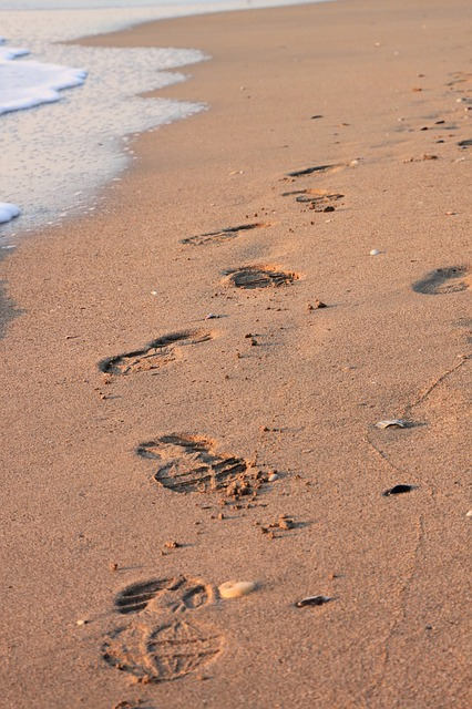 Free beach footprint sand water waves summer
