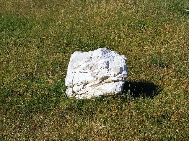 Free nature rock big single