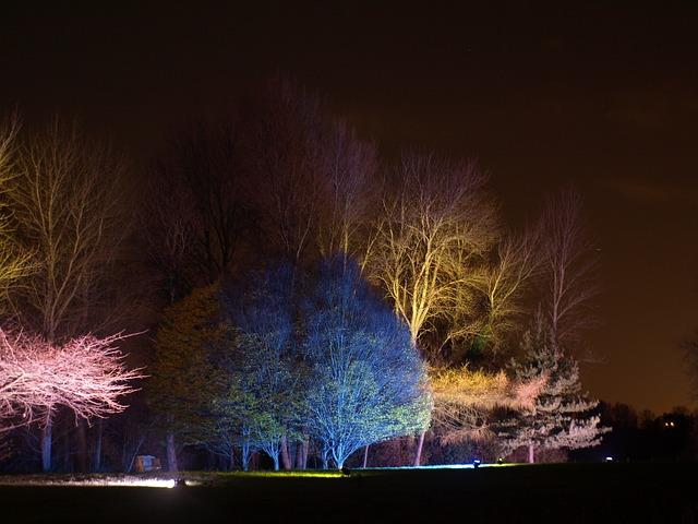 Free england great britain syon park enchanted woodland