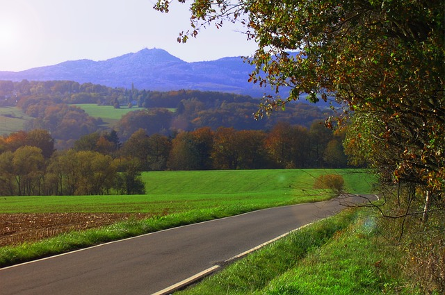 Free autumn brown fall foliage siebengebirge