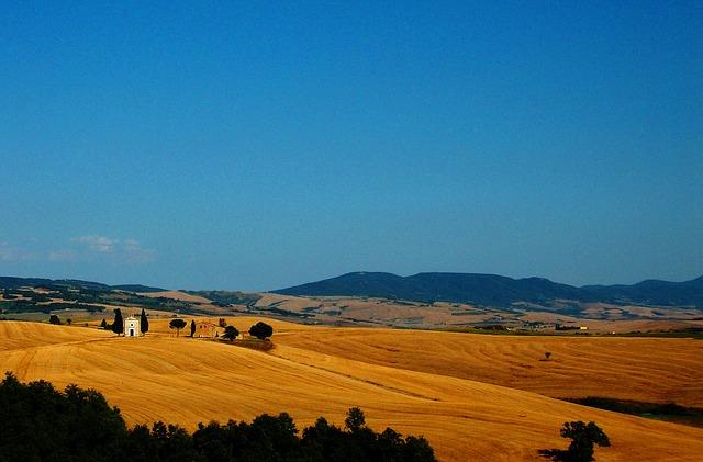 Free tuscany landscape cornfield field wheat cereals