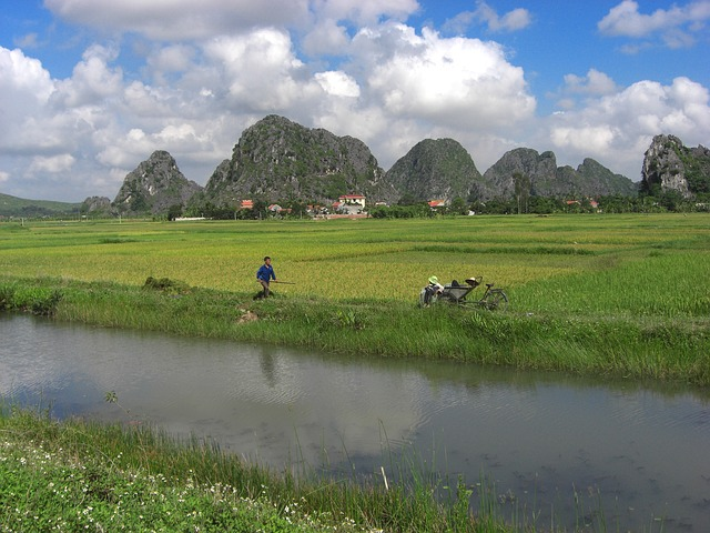 Free vietnam landscape river stream water reflections