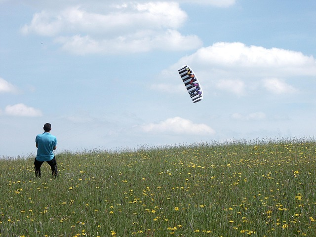 Free kite fly dragon sky blue clouds meadow green