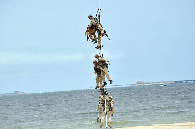 Free virginia beach sky clouds men dog rope hanging