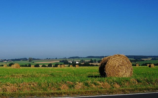 Free straw straw bales meadow sky blue