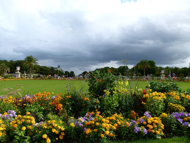 Free luxembourg flowers park sky clouds people nature