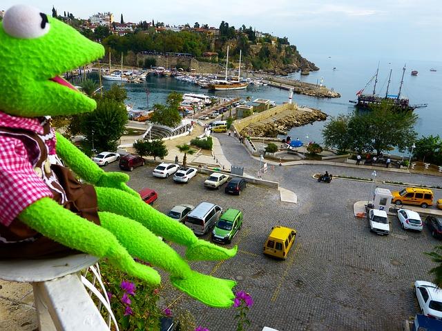 Free kermit frog green view antalya port autos road
