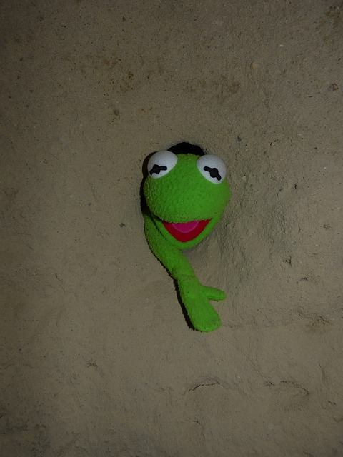 Free kermit frog green wall hole caught stone cold