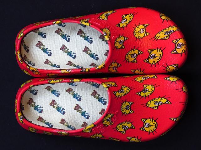 Free shoe slipper clog shoes slippers dutch red cat