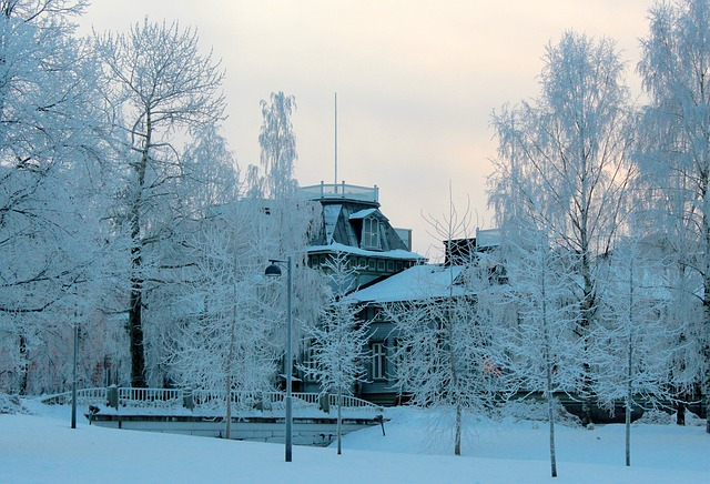 Free finland landscape winter snow ice trees icy