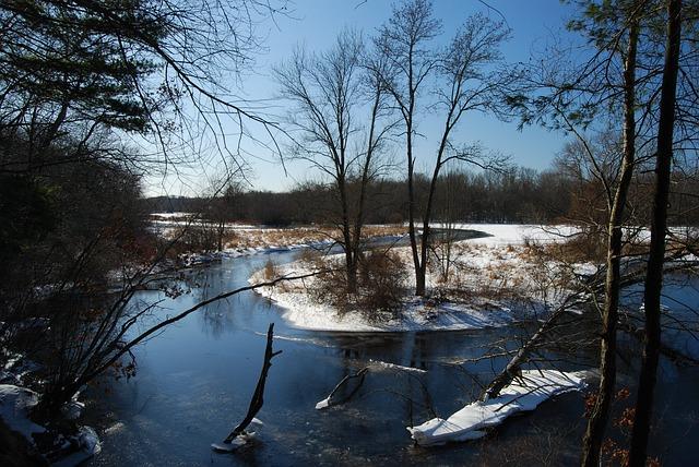 Free massachusetts river stream forest reflections