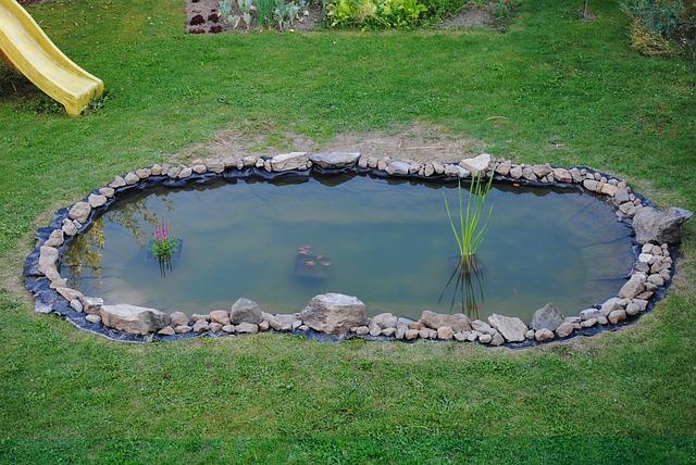 Free pond garden water