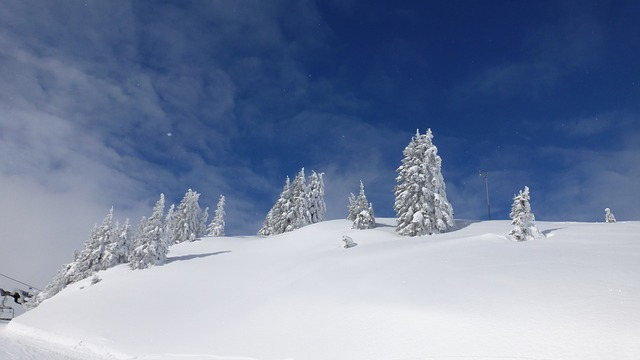 Free tyrol hahnenkamm winter snow wintry icy white