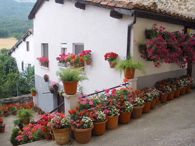 Free spain house home flowers pots potted nature