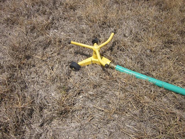 Free drought summer grass sprinkler hopeless