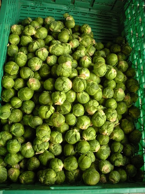 Free greengrocer brussels sprouts fresh green vegetables