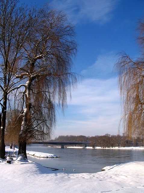 Free germany landscape trees sky clouds winter snow
