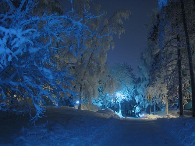 Free winter night street lamp shadow blue shade snow