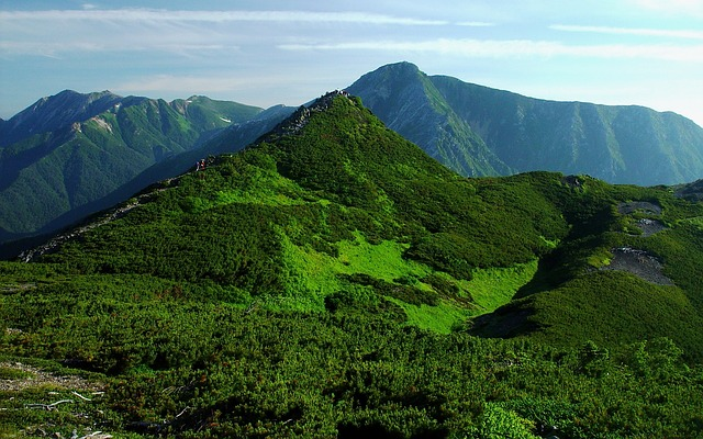 Free japan landscape mountains forest trees woods