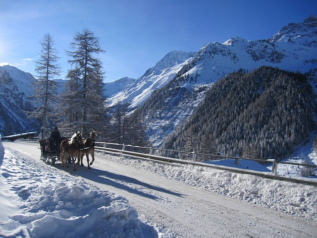 Free solda winter snow ortler carriage rides coach