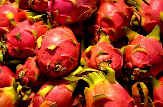 Free dragon fruit fruit food pitaya pitahaya tropical