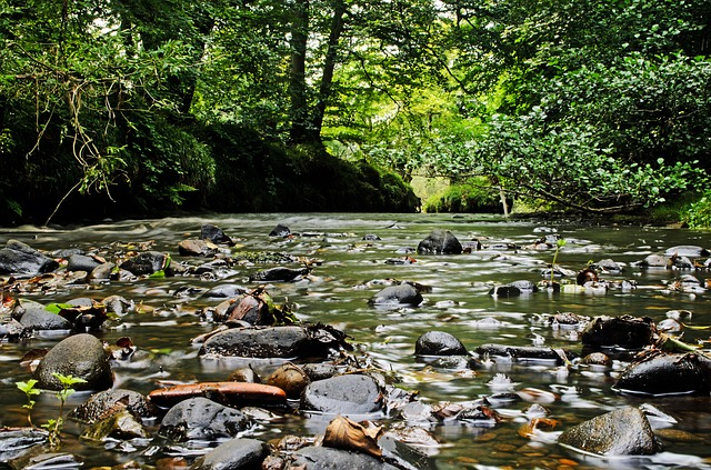 Free landscape background seasons river water rock