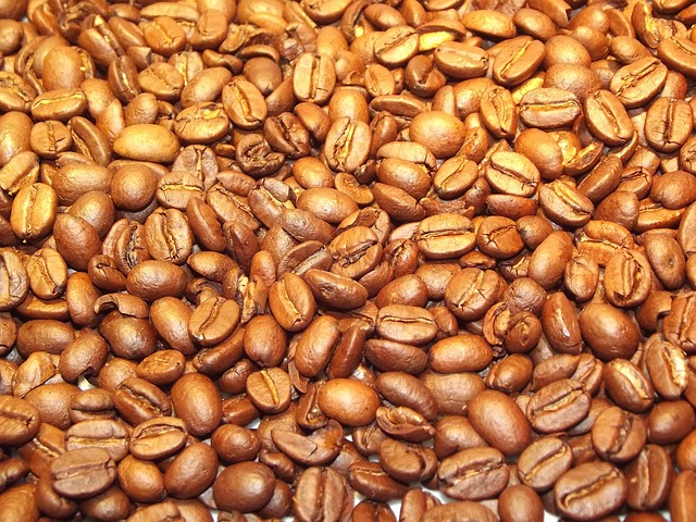 Free coffee beans coffee beans golden java