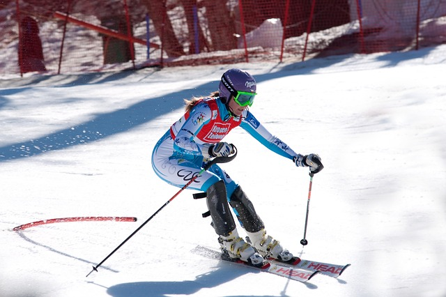 Free snow ski sarka zahrobska sports world cup
