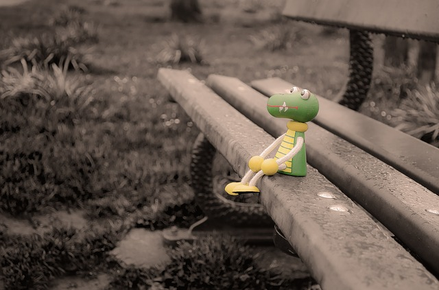 Free lost toy crocodile puppet wood bench park