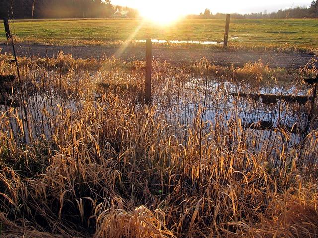 Free sunset farm landscape