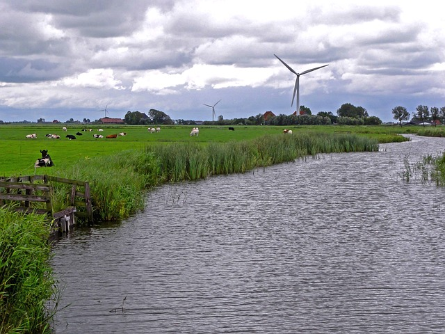 Free netherlands landscape river stream water grass
