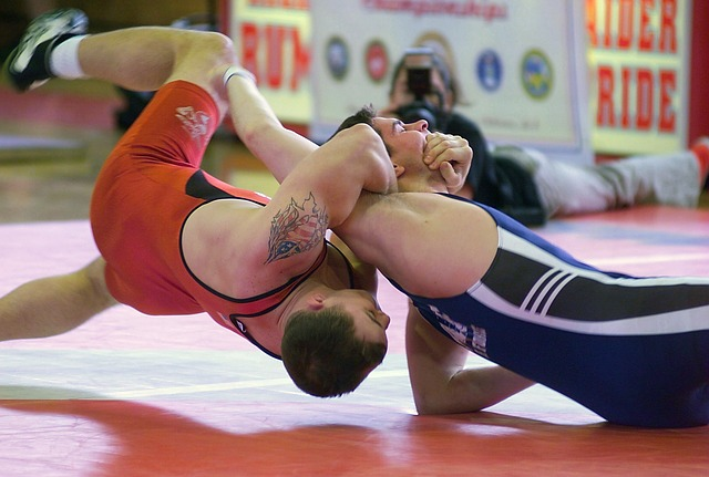 Free men wrestling sports grappling mat grasping