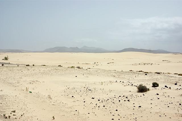 Free desert loneliness arid drought sand landscape