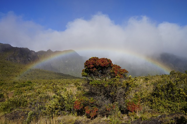 Free Photos: Maui hawaii sky clouds landscape rainbow | David Mark