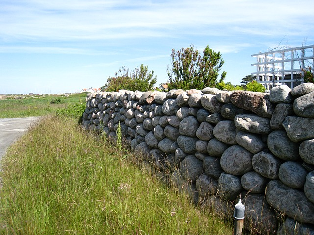 Free the garden farm stones wall grass shrubs tree