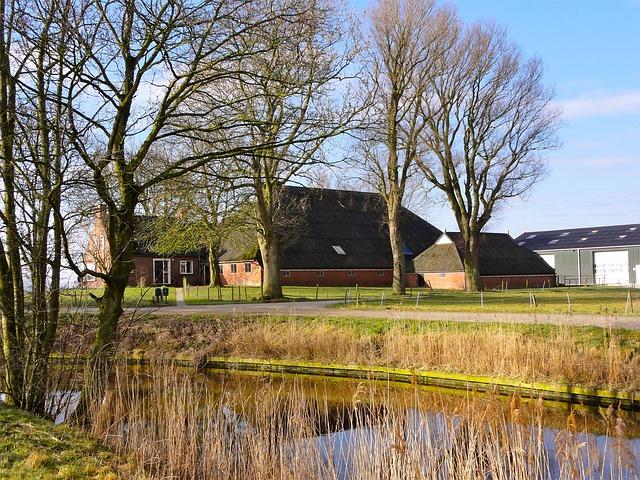 Free netherlands landscape trees pond stream water