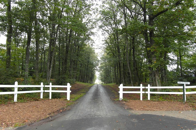 Free france trees road driveway fence picket summer