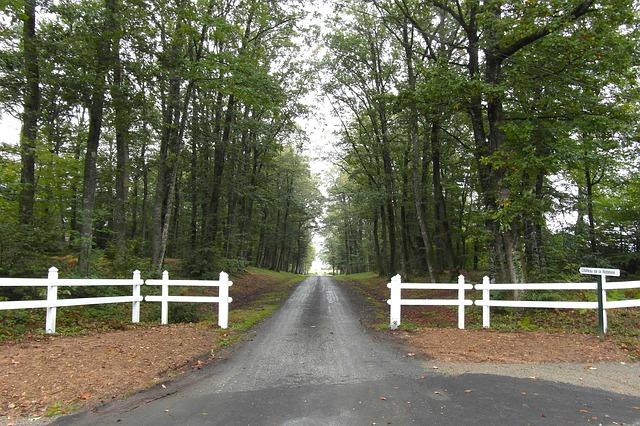 Free Photos: France trees road driveway fence picket summer | David Mark